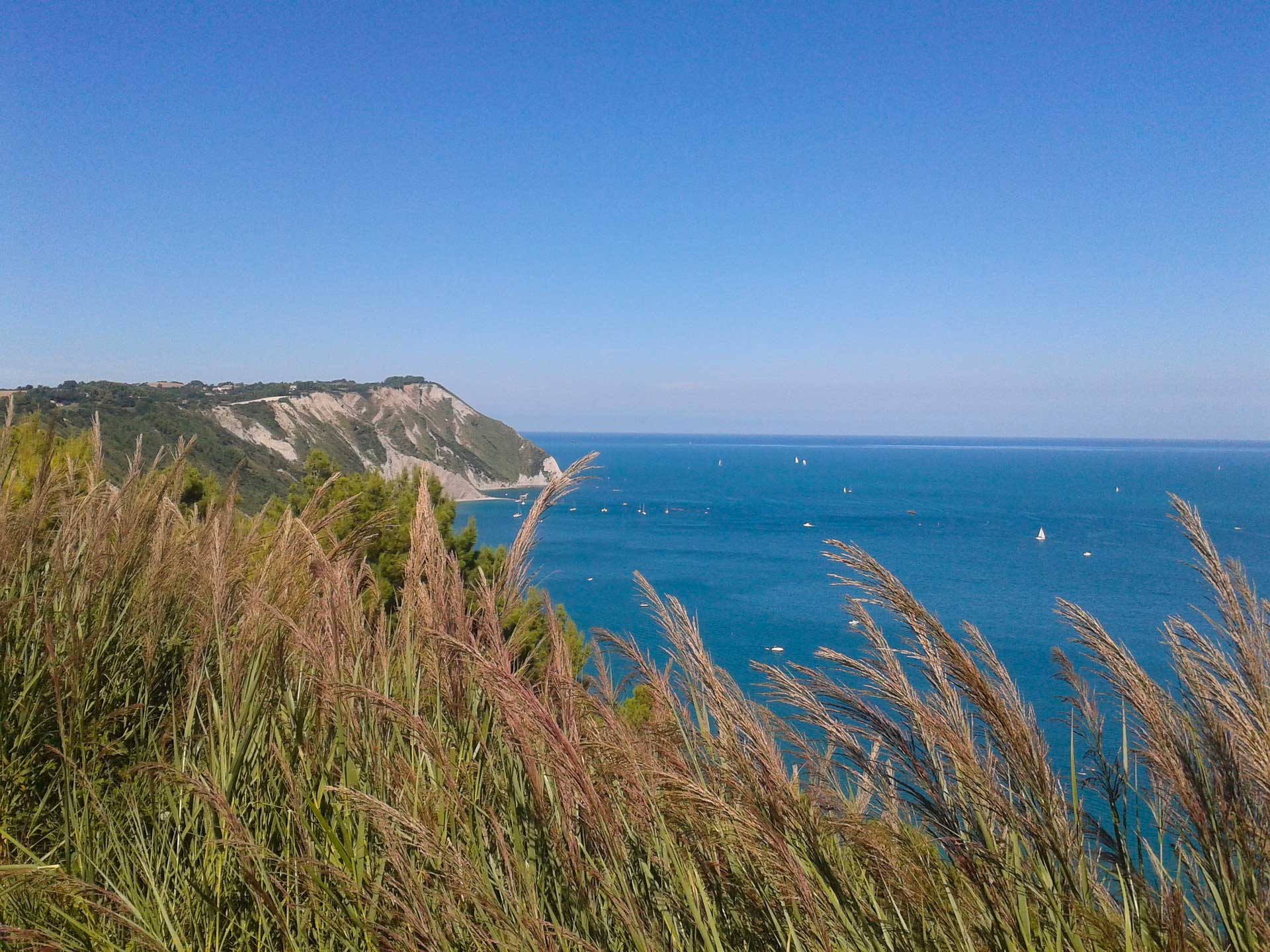 regione marche bed and breakfast